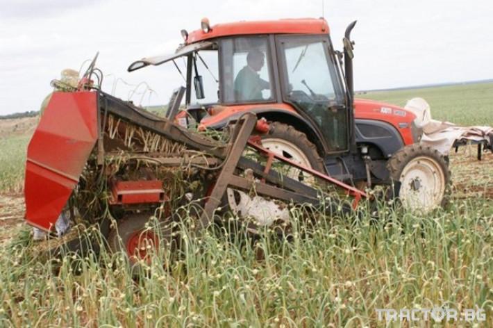 Машини за зеленчуци Машина за вадене на чесън JJBroch  модел ARCO 2 - Трактор БГ