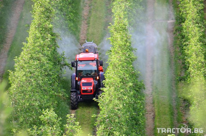 Трактори Goldoni Лозаро-овощарски трактор Star 100 4