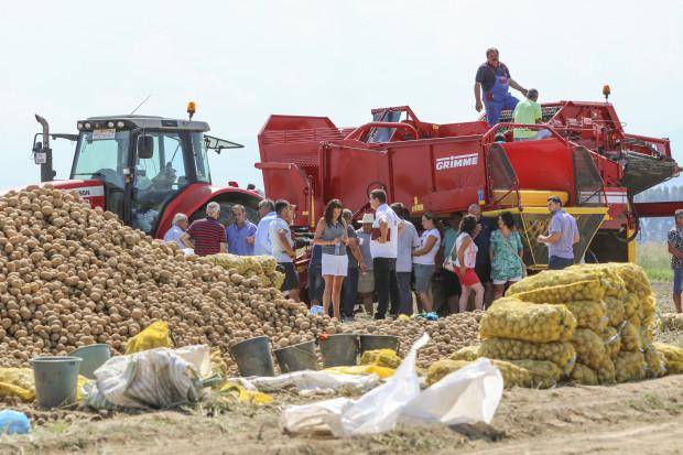 Тайгър Агри показа най-новите технологии от Grimme за картофи